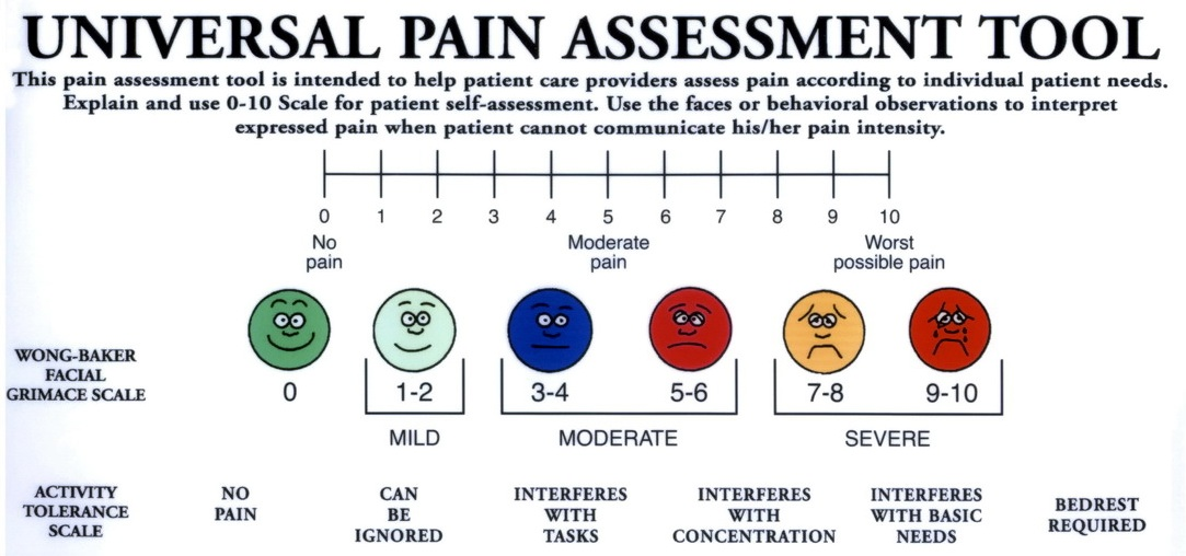 observational pain assessment scales